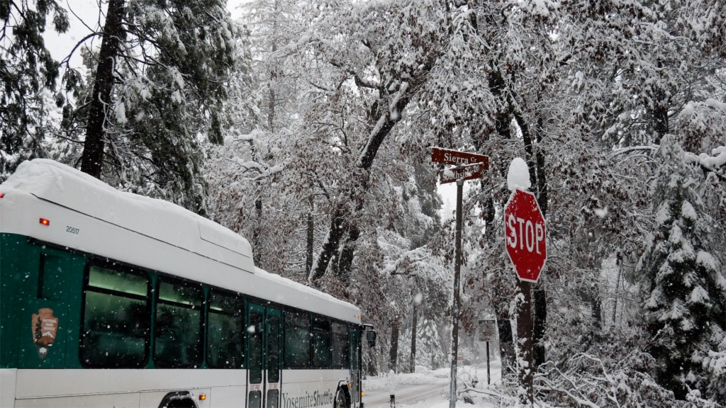 冬のヨセミテ国立公園とバス
